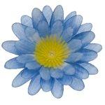 Gerbera blauw stof klein ca. 6,5 cm (10 stuks)
