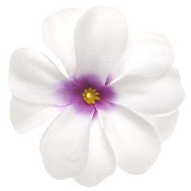 Zomerse bloem wit met paars hart ca. 7 cm (10 stuks)