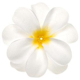 Zomerse bloem wit met geel hart ca. 7 cm (10 stuks)