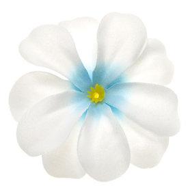 Zomerse bloem wit met aqua hart ca. 7 cm (10 stuks)