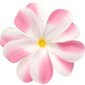 Zomerse bloem wit met roze ca. 7 cm (10 stuks)