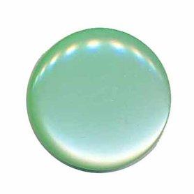 Knoop glans mint groen 25 mm (ca. 25 stuks)