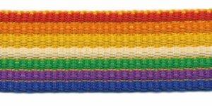 Tassenband 25 mm streep regenboog rood/oranje/geel/groen/paars/blauw EXTRA STEVIG (ca. 5 m)