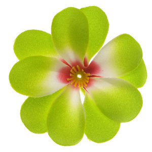 Zomerse bloem groen ca. 7 cm (10 stuks)