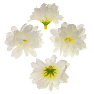 Chrysant wit met ronde blaadjes ca. 5 cm (10 stuks)