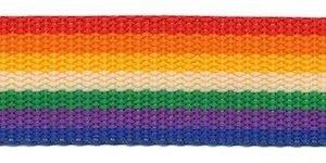 Tassenband 25 mm regenboog streep rood/oranje/geel/wit/groen/paars/blauw STEVIG (ca. 5 m)