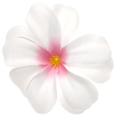 Zomerse bloem wit met roze hart ca. 7 cm (10 stuks)