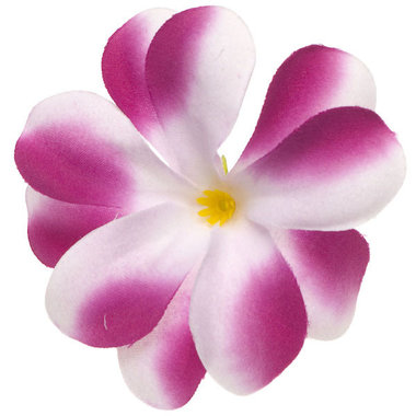 Zomerse bloem wit met aubergine ca. 7 cm (10 stuks)