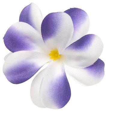 Zomerse bloem wit met paars ca. 7 cm (10 stuks)