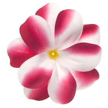 Zomerse bloem wit met cyclaam ca. 7 cm (10 stuks)