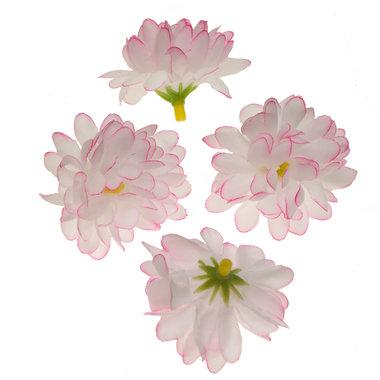 Chrysant wit/roze met ronde blaadjes ca. 5 cm (10 stuks)