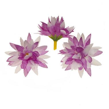 Chrysant wit/lila met puntige blaadjes ca. 5 cm (10 stuks)